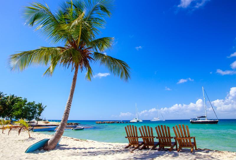 A Dominikai Köztársaság és a tengeri fű problémája